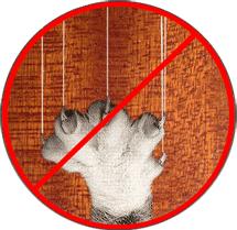 На дверных панелях из ламината не остаётся следов от когтей
