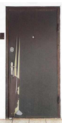 Собака грызёт дверную накладку